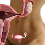 Операции по удалению полипов эндометрия без последствий и гистероскопия в Москве